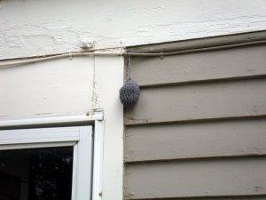 Decoy Wasp Nest