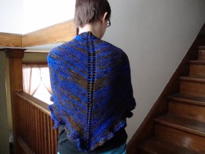 Tenth Doctor Shawl